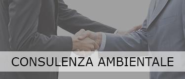 banner_consulenze